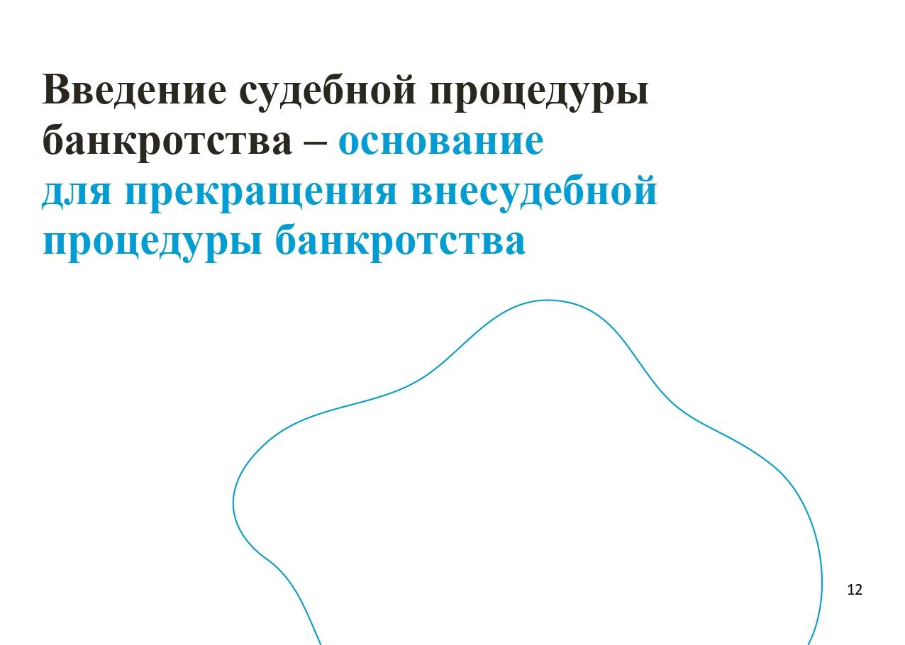 Презентация по банкротству(1)_page-0012